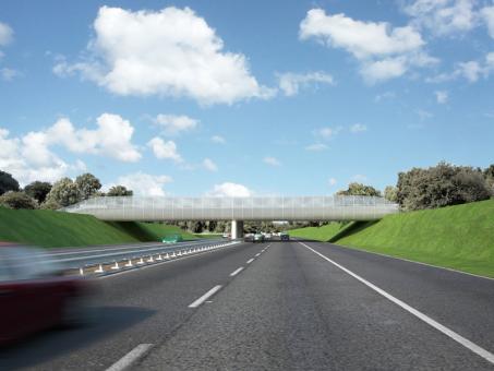 bridgecompetition01.jpg